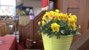 FlowerFestival_CH_20140409_017